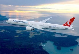 Turkish Airlines to launch multiple charter flights to Georgia