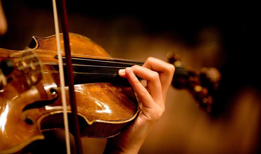 Британскому музыканту вернули забытую в поезде скрипку стоимостью $320 тыс.