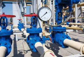 Turkmenistan's Turkmennebit reveals data on production, supply of gas
