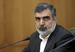 Iran's AEO spokesman talks Natanz nuclear facility damage following accident