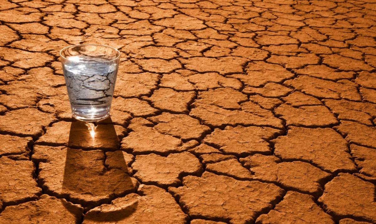 Egypt to use modern irrigation systems to cope with water scarcity