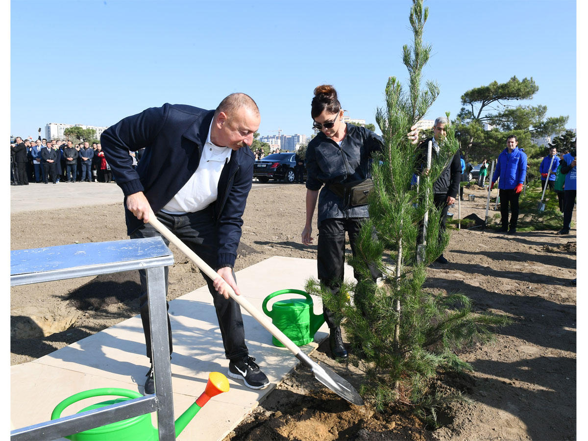 Azerbaijani president, first lady attend tree-planting campaign in Khatai district, Baku (PHOTO)