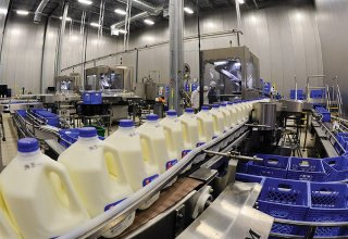 Azerbaijan's dairy products become more popular abroad
