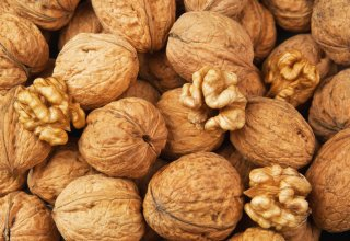 German manufactures interested in buying high-quality walnuts in Georgia