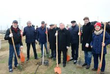 Alexander Sharovsky: I planted tree for first time in my life (PHOTO) - Gallery Thumbnail