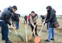 Trend.az, Day.az, Milli.az & Azernews.az staff take part in tree planting campaign (PHOTO/VIDEO) - Gallery Thumbnail