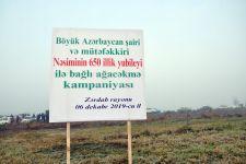"""Zərdablılar """"Bir gündə 650 min ağac əkək"""" təşəbbüsünə fəallıqla qoşulublar (FOTO) - Gallery Thumbnail"""