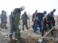 Azerbaijan's Azeraluminium holds tree planting campaign in memory of national leader Heydar Aliyev (PHOTO) - Gallery Thumbnail