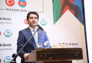 Nagif Hamzayev: Azerbaijan contributes to unification of Turkic states