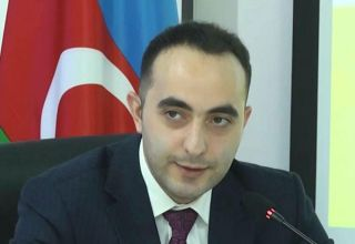 Analyst: Economic policy pursued by presidents of Azerbaijan, Turkey makes countries strong