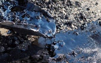 Предложения по очистке загрязненных пестицидами территорий представлены правительству Азербайджана