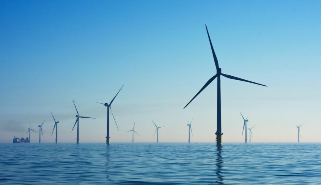 International Ocean Renewable Energy Action Coalition set up