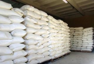 Turkmenistan significantly increases import of wheat flour from EAEU countries