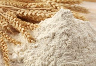 Volume of wheat flour exports from EAEU to Turkmenistan revealed