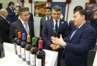 Azerbaijan participates in International Green Week exhibition in Berlin (PHOTO)