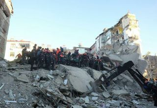 Death toll in Turkey earthquake rises to 29