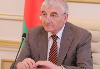 Azerbaijani CEC makes statement on halting election results at some polling stations