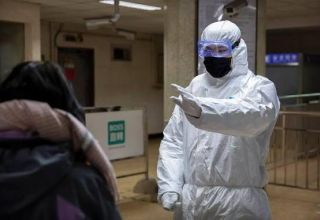 Russia sends tools to diagnose novel coronavirus to North Korea
