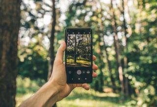 В Азербайджане со смартфонов можно будет наблюдать за ситуацией в лесах