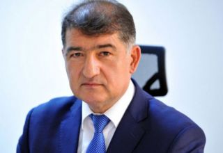 Deputy minister talks tree-planting campaigns in liberated lands of Azerbaijan