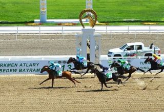 UK to supply Turkmenistan with special materials for racecourses