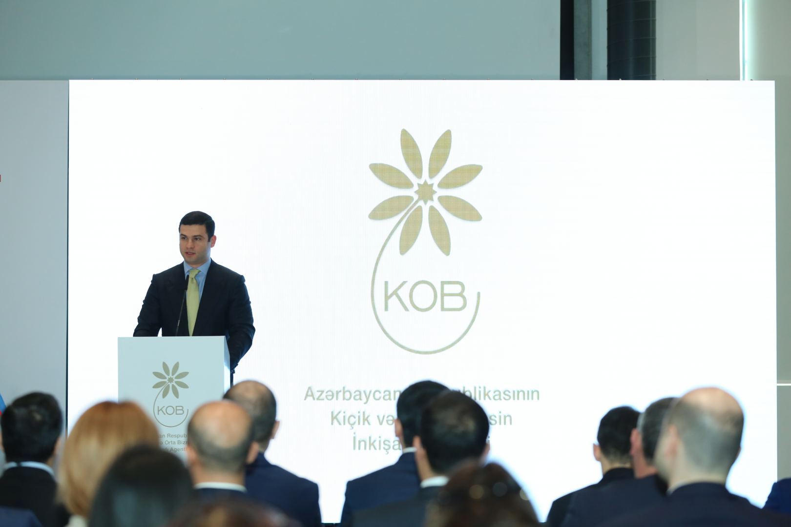 Azerbaijan's potential for entrepreneurship in culture & art sector highlighted