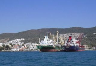 Data movement of cargo via Turkish Gulluk port revealed