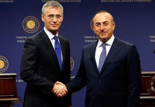 Cavusoglu, Stoltenberg discuss Idlib