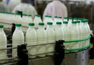 EAEU increases exports of dairy products to Turkmenistan
