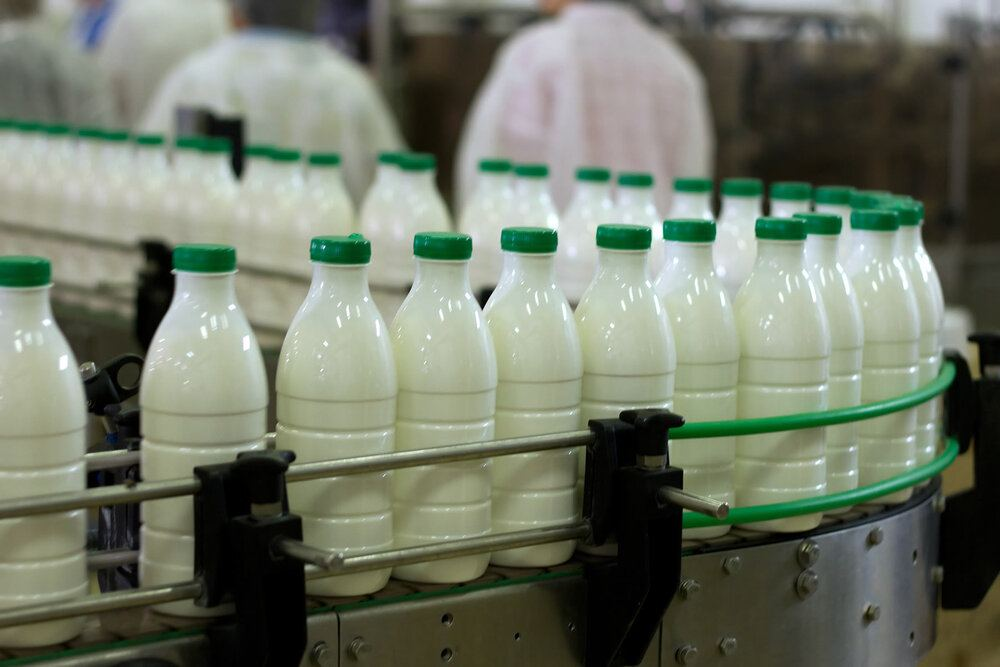 Export of dairy products to Turkmenistan from EAEU grows