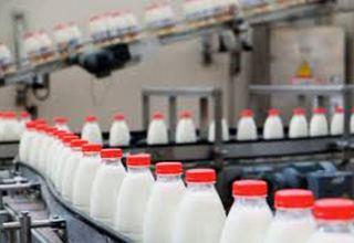 В Кыргызстане в 2020 году произведено более 1,4 млн тонн молока