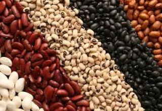 Turkmenistan increases imports of dried legumes from EAEU countries
