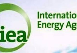 No new oil, natural gas fields required amid net-zero emission activity– IEA