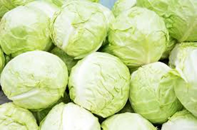 Kazakh farmers to export cabbage to Russia as export restrictions lifted