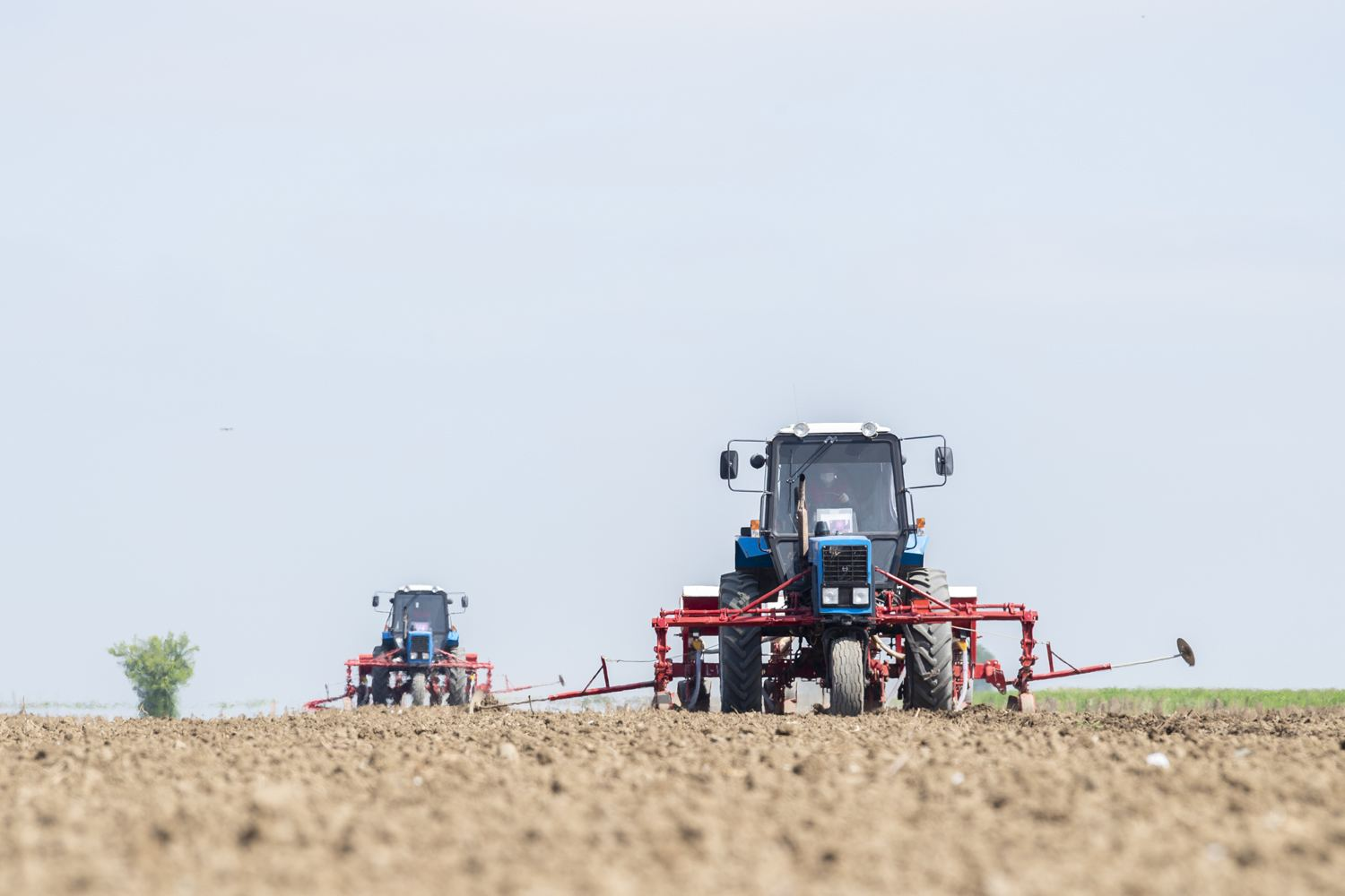 Cotton-growing regions of Azerbaijan start sowing