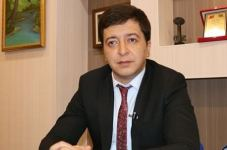 Minsk Group worked ineffectively for 30 years on Karabakh - MP - Gallery Thumbnail