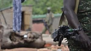 12 rangers killed in armed attack in national park in DRC