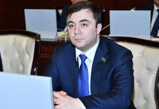 Azerbaijani MP: CE position on Karabakh conflict reflects its true essence