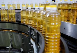 Iran's vegetable oil industry faces challenges