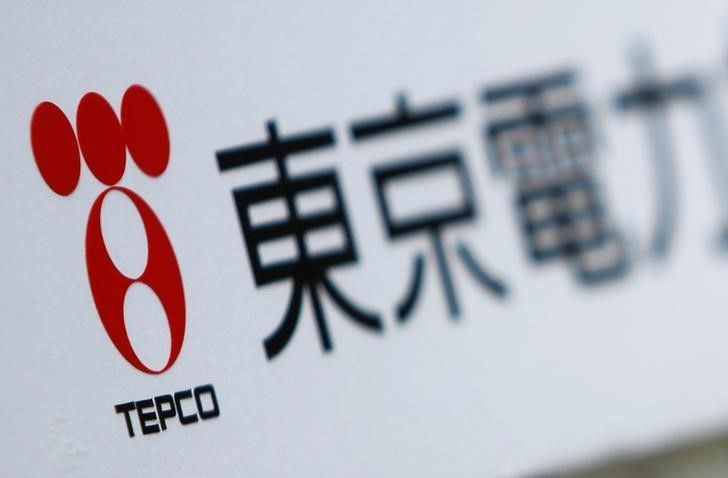 Japanese TEPCO aims to invest in Georgian energy industry