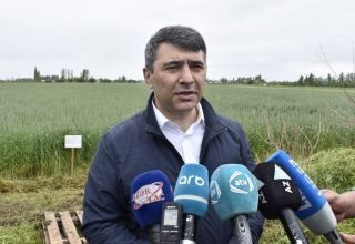 Minister: No problems in transportation of food products in Azerbaijan