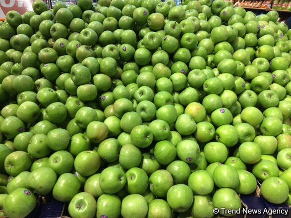 Apples emerging as export crop for second year in Georgia