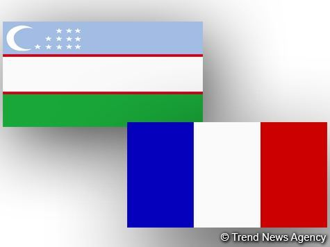 Uzbekistan seeks to learn French experience in fight against COVID-19
