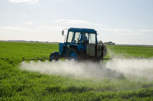 Japanese holding buys stake in the Uzbek agricultural chemicals manufacturer