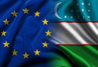 Uzbekistan meets criteria for participation in GSP+, EU commission says