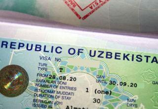 Uzbekistan to issue new type of immigration visa