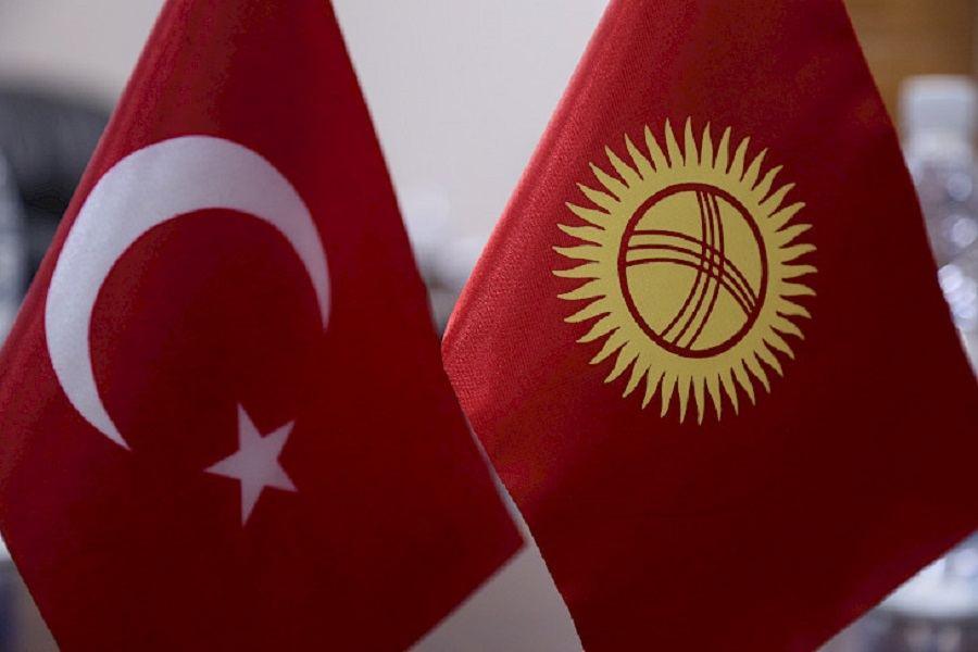 Турция готова оказать помощь Кыргызстану в борьбе с коронавирусом