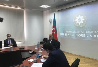 Azerbaijani FM, EU commissioner hold meeting in videoconference format (PHOTO)
