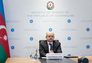 Energy Minister: One of key goals is to ensure effective use of resources in Azerbaijan's liberated lands (INTERVIEW)