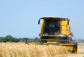 Iran to settle all wheat farmers' claims